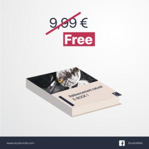 ebook-référencement-naturel-StudioMIKL